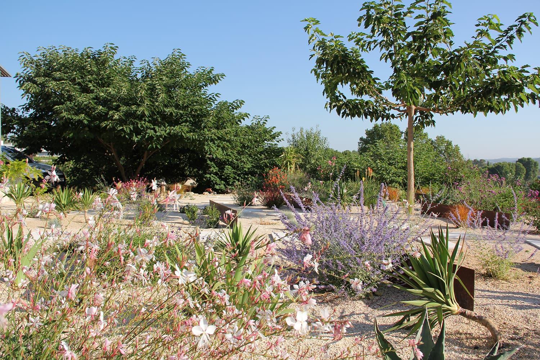 réalisation d'un jardin sec méditerrannéen avec cactées et plantes mediterranéennes sur les hauteurs de Montpellier