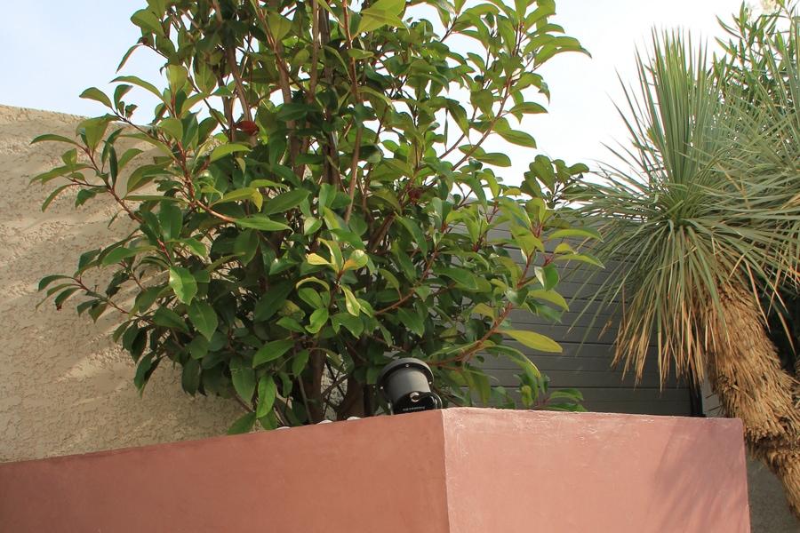 jardinière en bêton ciré