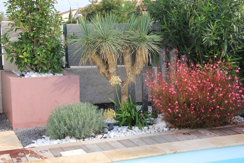 jardin plantes méditerranéennes